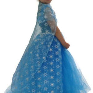 Frozen Inspired Snowflake Tutu Dress
