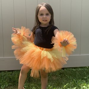King of the Jungle Lion Birthday Tutu Set