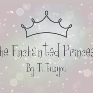 the enchanted princess box