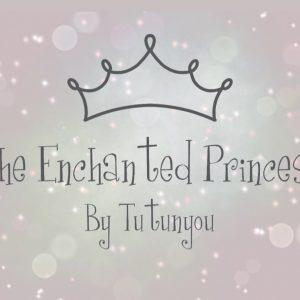 the enchanted princess box